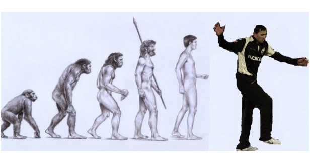 The Actual Theory Of Evolution