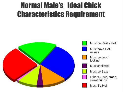 Normal Male's Requirements - The Ideal Chick